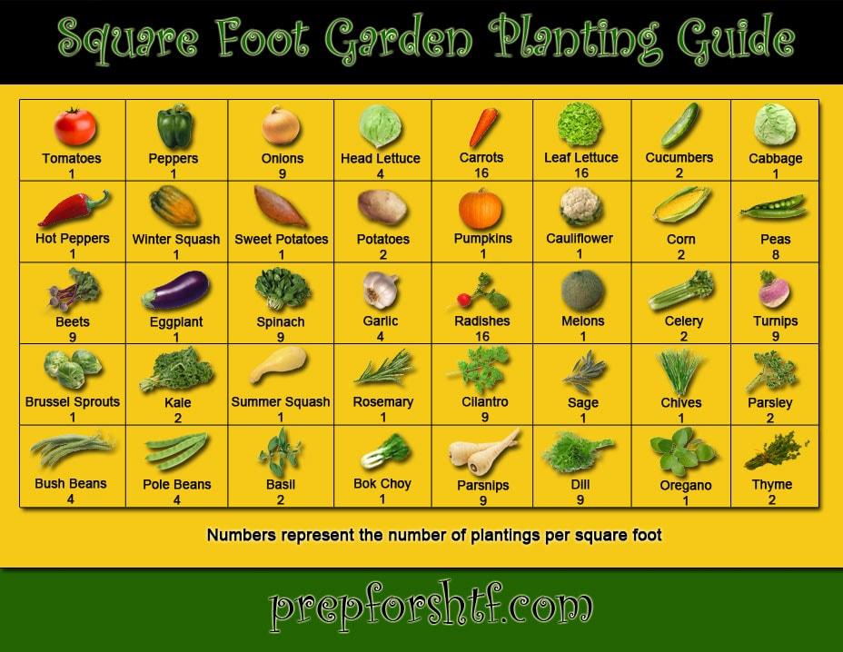 Sqaure_Foot_Planting_Guide_LG
