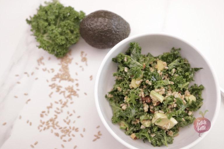 Salade avocat kale farro blé tendre