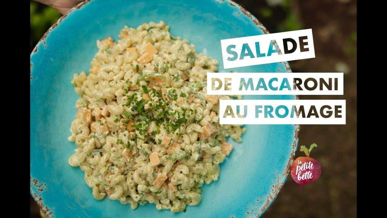 Salade de macaroni (coquillettes) au fromage et à la moutarde
