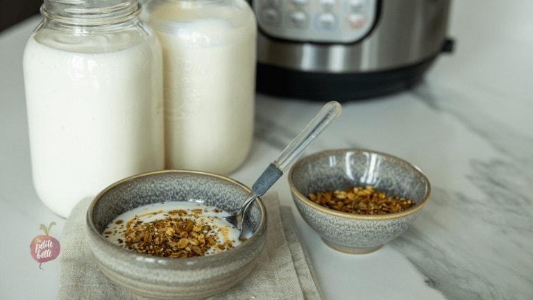 yaourt vegan, sans lactose ou régulier maison